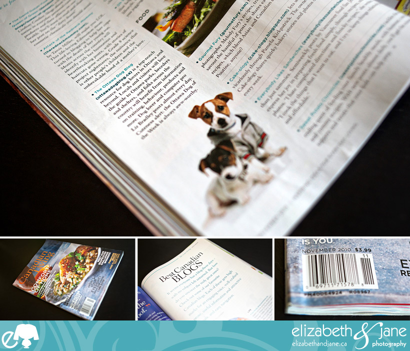Ottawa Dog Blog in Canadian Living Magazine