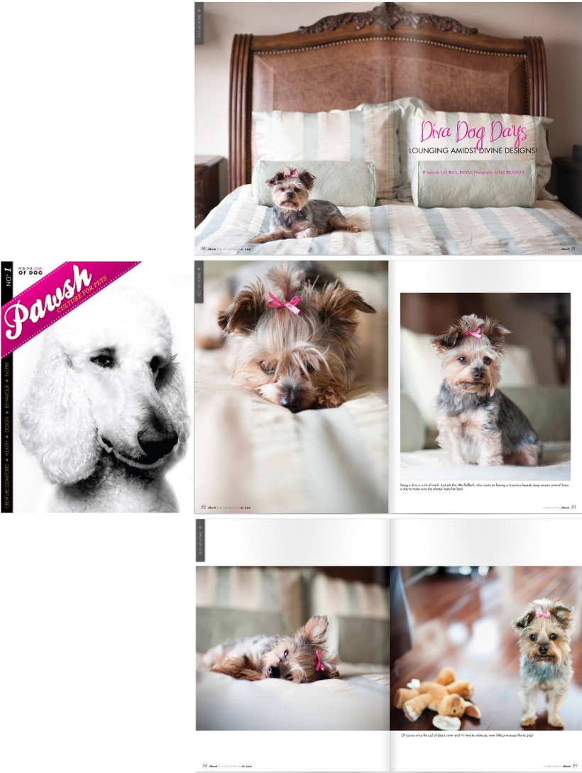 elizabeth&jane pet photographer featured in PAWSH Magazine