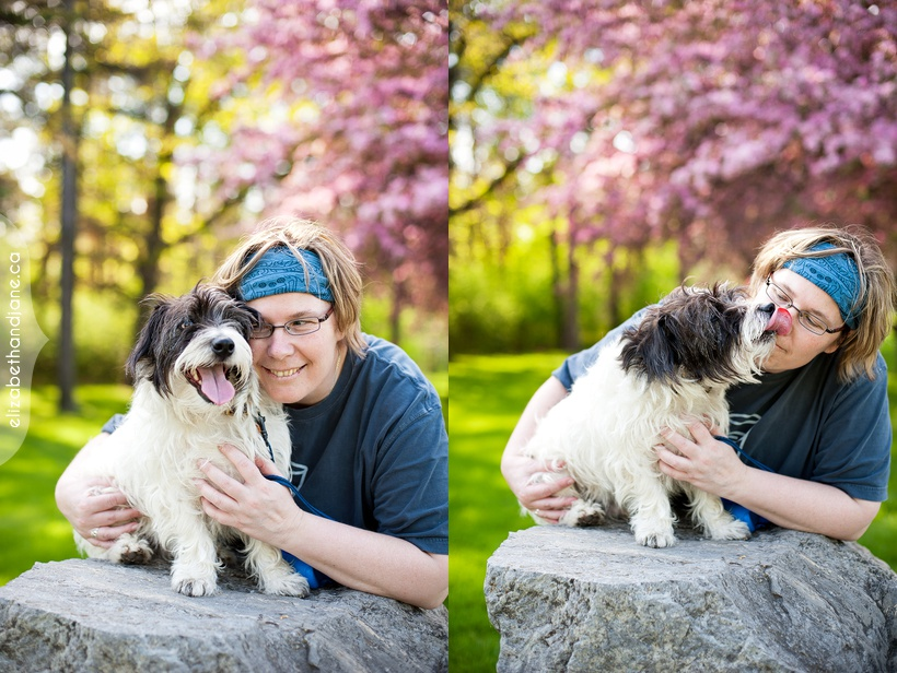 Ottawa dog photographer scruffy 12