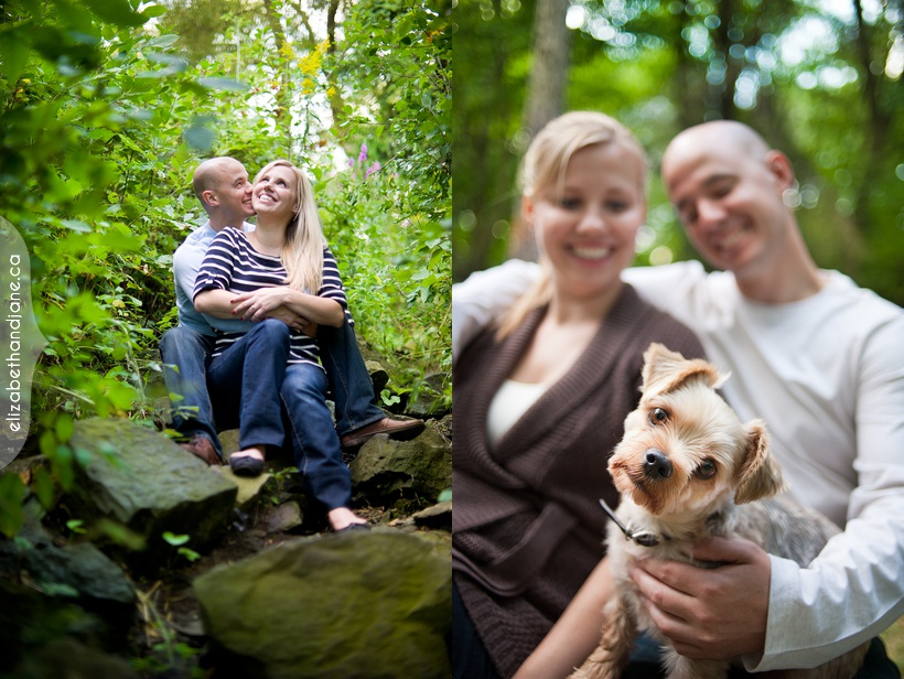 Ottawa wedding dog photographer lauren alex esession sneakpeek 01