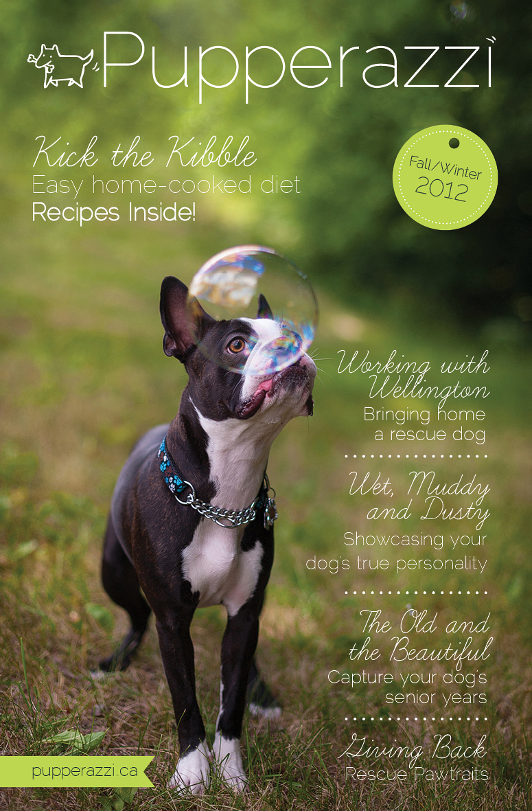 The Pupperazzi Fall 2012  Issue 1 teaser