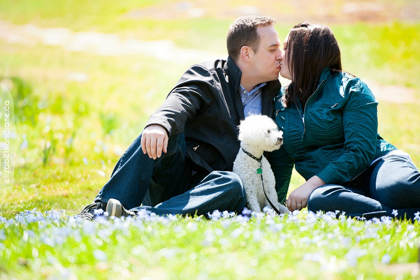 Ottawa engagement photography elizabethandjane melanie curtis engagement 01