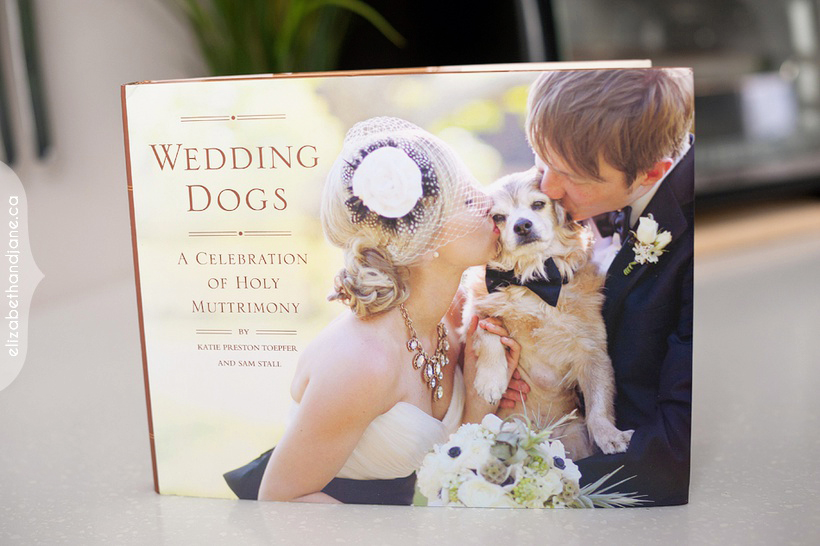 Published in Wedding Dogs 01