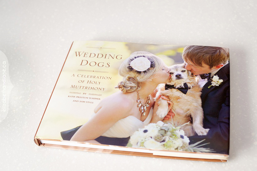 Published in Wedding Dogs 02