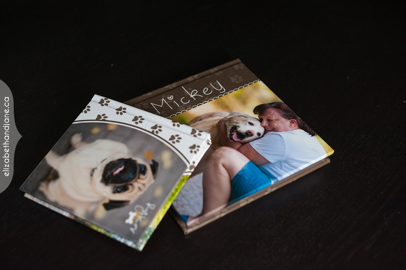 Ottawa pet photography elizabethandjane mickey product 04