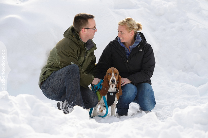 Family session with dogs in the winter in Ottawa photographed by Liz Bradley of elizabeth&jane photography.