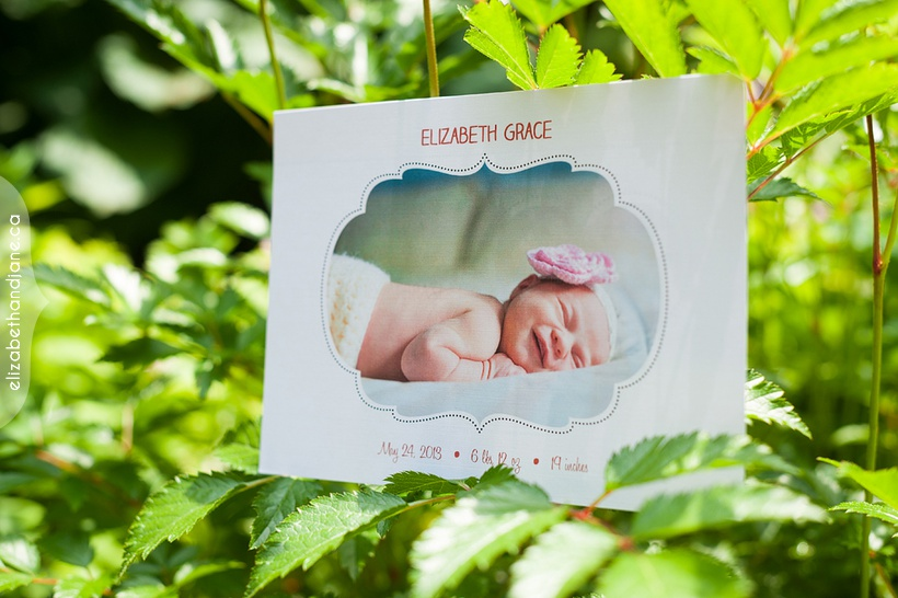 Birth announcement of Elizabeth photographed in Ottawa by Liz Bradley of elizabeth&jane photography