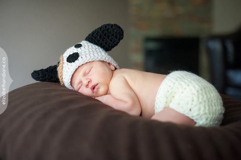 Newborn Elizabeth photographed in Ottawa by Liz Bradley of elizabeth&jane photography