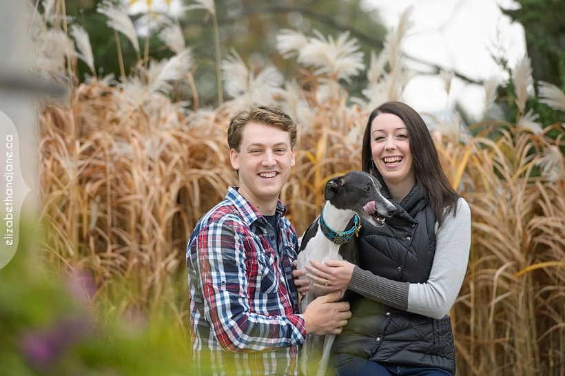 Tiffany & Phil & Winston the Dog  photographed in Ottawa by Liz Bradley of elizabeth&jane photography