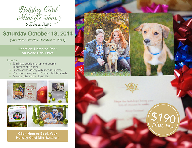 Holiday Card Mini Sessions by elizabeth&jane photography