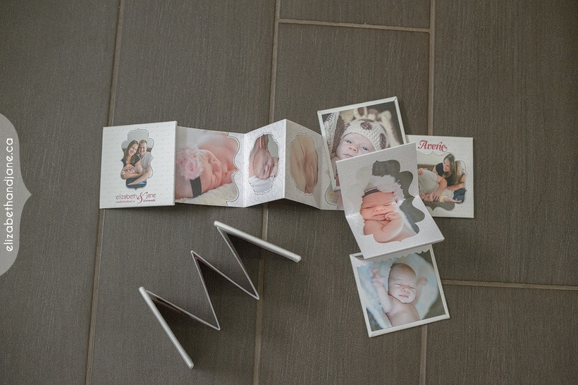 Averie's Mini Books photographed in Ottawa by Liz Bradley of elizabeth&jane photography