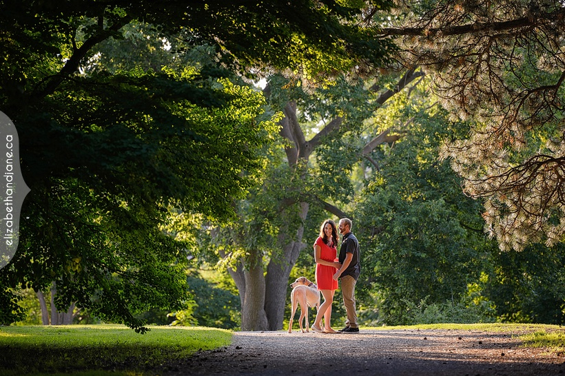 Vero and Dylan's engagement session with their great dane dog photographed in Ottawa by Liz Bradley of elizabeth&jane photography