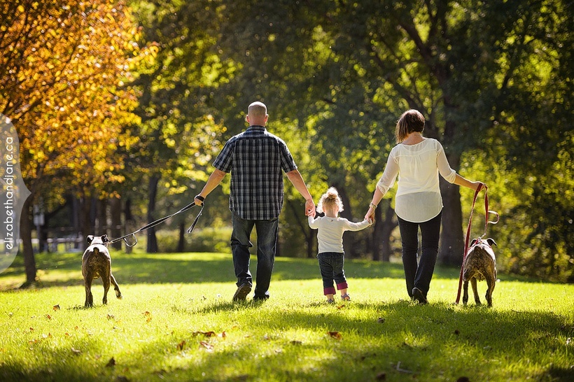 Barnhart Family Session with their dogs in Ottawa photographed by Liz Bradley of elizabeth&jane photography