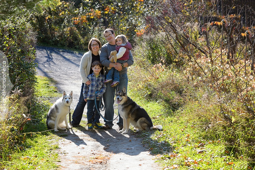 Porter-Chapman Family with their dogs photographed in Ottawa by Liz Bradley of elizabeth&jane photography