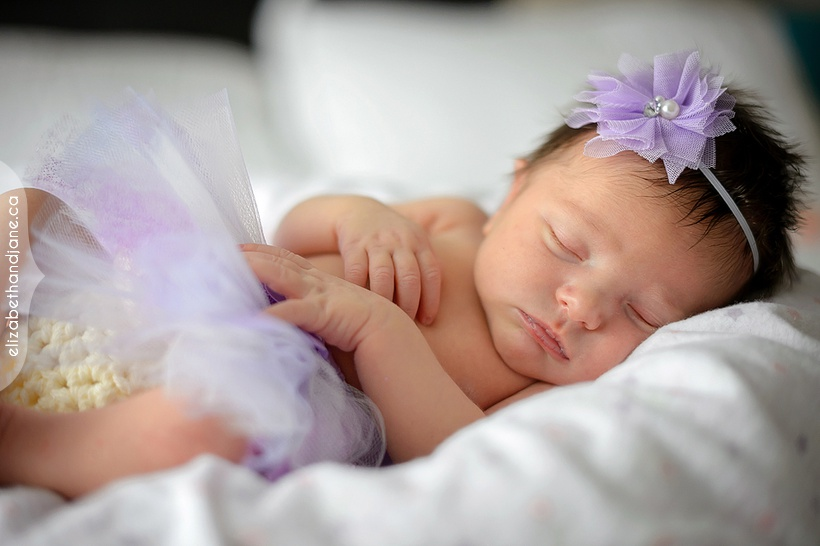 Baby Brooklyn's newborn session photographed by Liz Bradley of elizabeth&jane photography