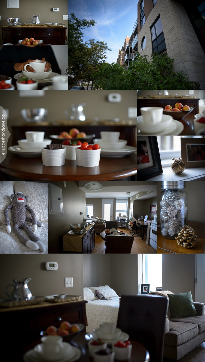 AnaLori's apartment session in Ottawa photographed by Liz Bradley of elizabeth&jane photography